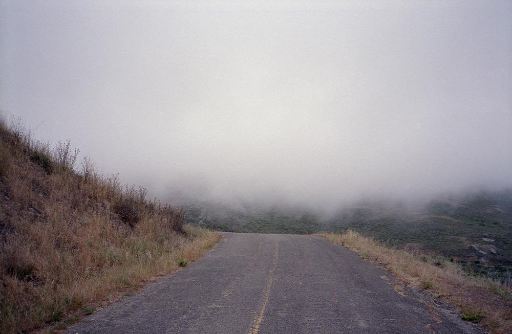 02 - fog edit.jpg
