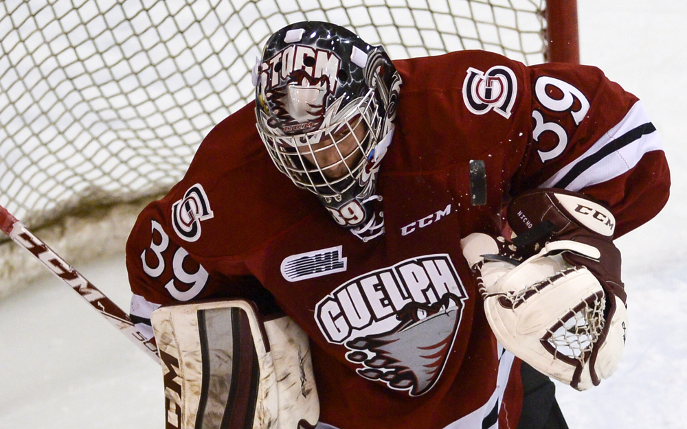 Guelph Storm goalie Justin Nichols keeps an eye on the puck during a game against the Belleville Bulls at Yardmen Arena in Belleville, Ont. November 15, 2014. The Storm managed to score twice in the third period, winning 2-1.