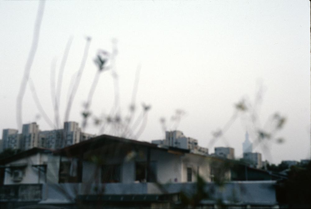 8-2 Wei Hsinyen (2).jpg