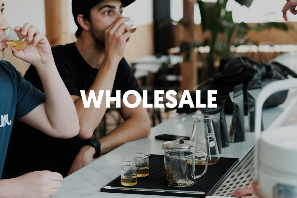 hp_promo_wholesale.jpg