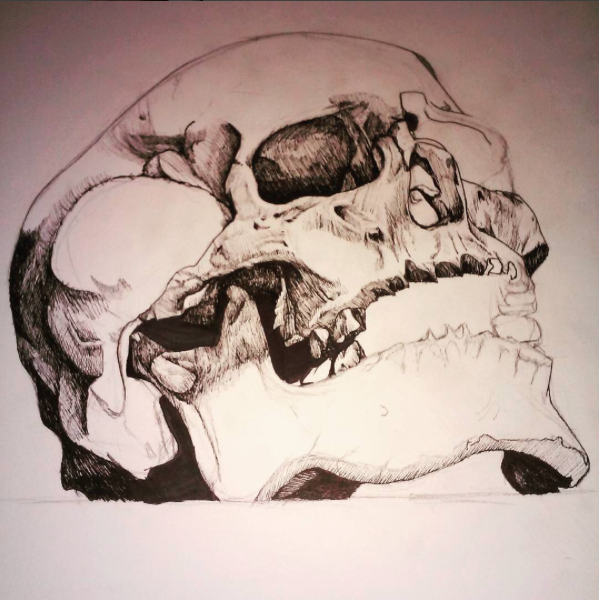 "Link   Artist: Braxton Hawkins  Titile : Skull Study  Size: 1""x1""  Mediums: Pen  W.I.P or Done W.I.P"