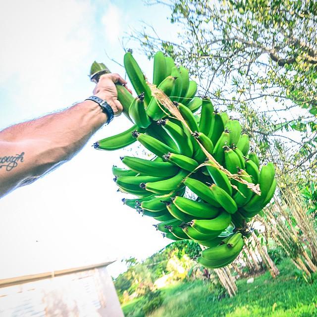 La macha de plátano no sale ni con Clorox