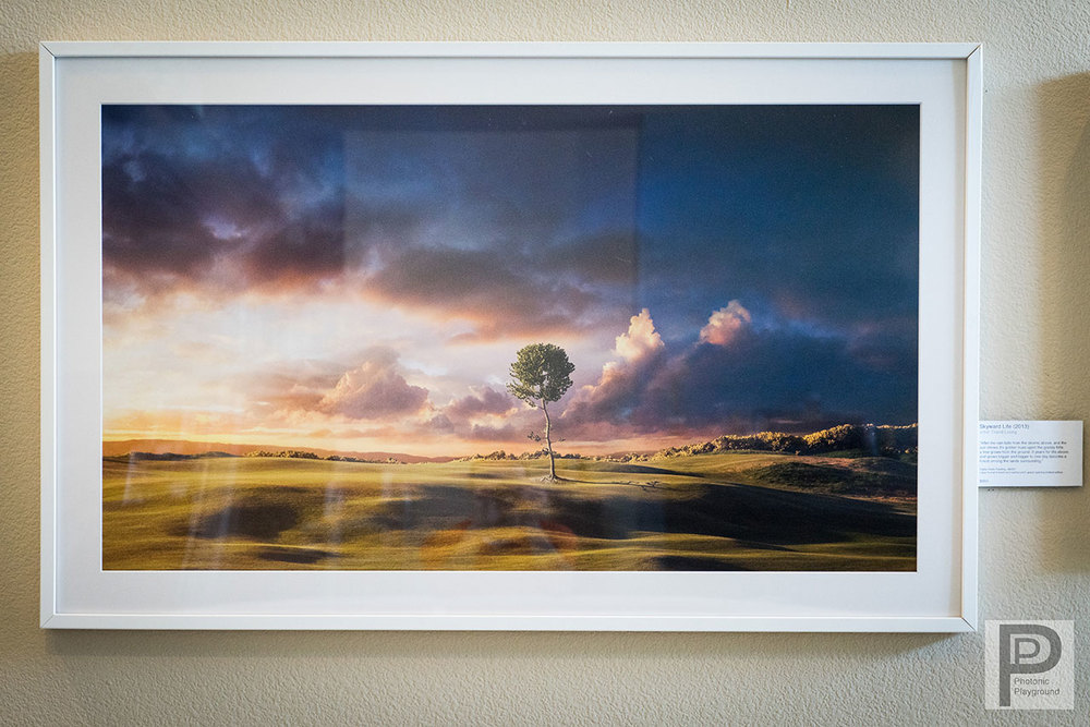 "Framed/matted gallery art of ""Skyward Life"""