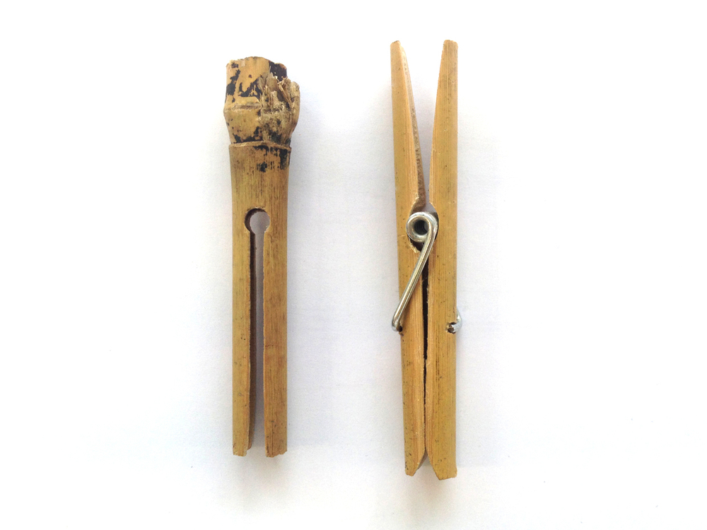 Sustainable Bamboo Pegs - Glenn Catchpole