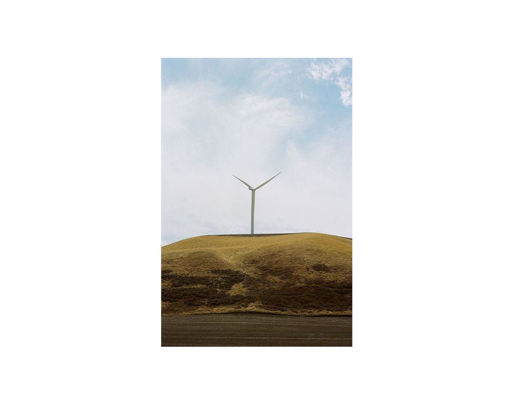 windyWEB.jpg