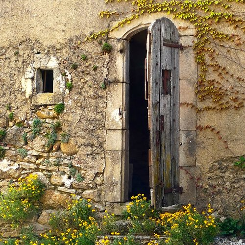 Crumbling stone,, climbing vines, yellow wildflowers, and weathered wood antique arched door. South of France Fixer Upper Château Gudanes. #southoffrance #frenchchateau #provence #frenchcountry #renovation