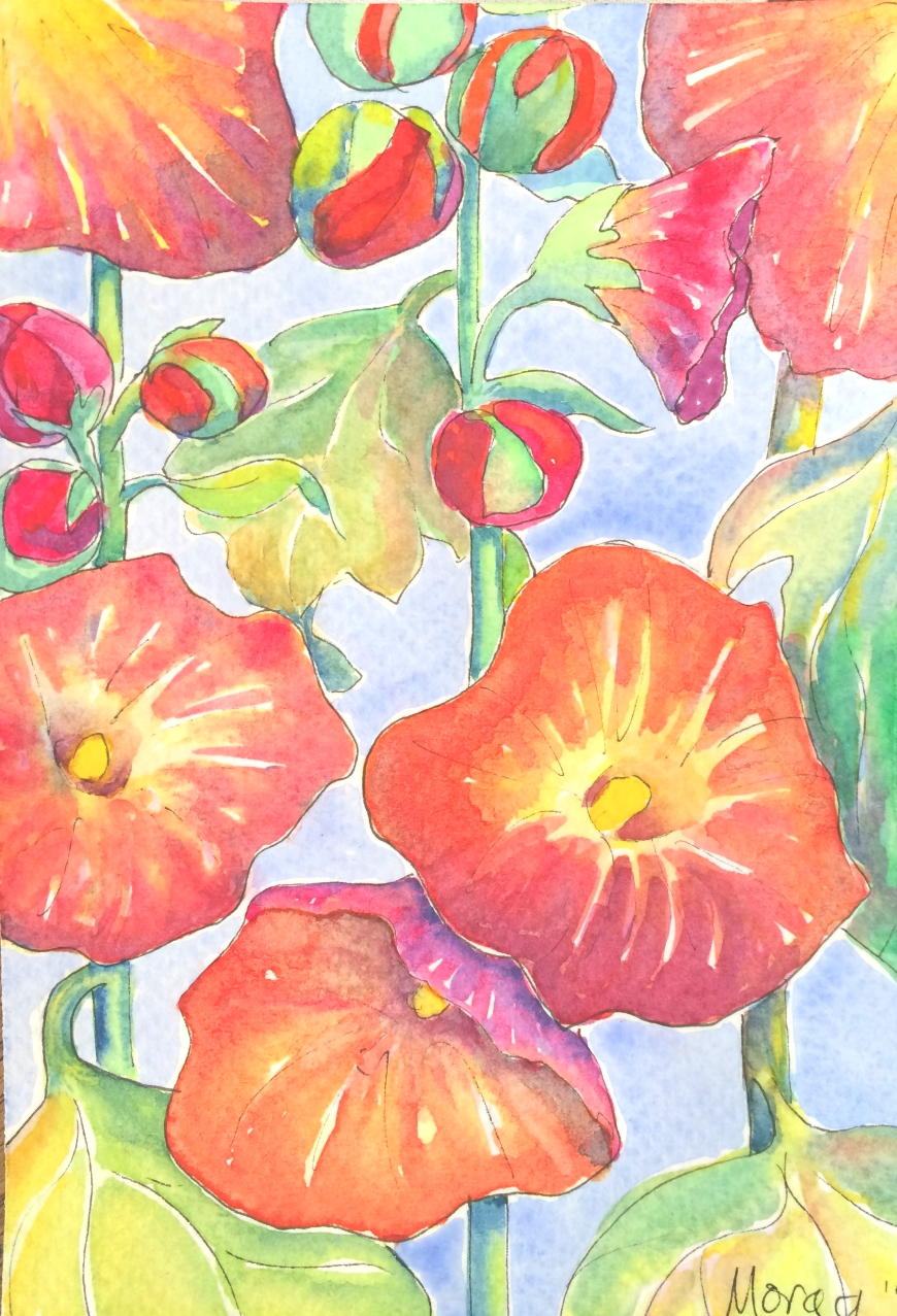 watercolour hollyhocks1 web.jpg