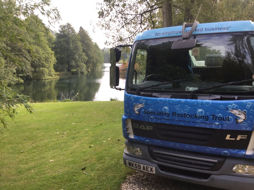 Fish lorry