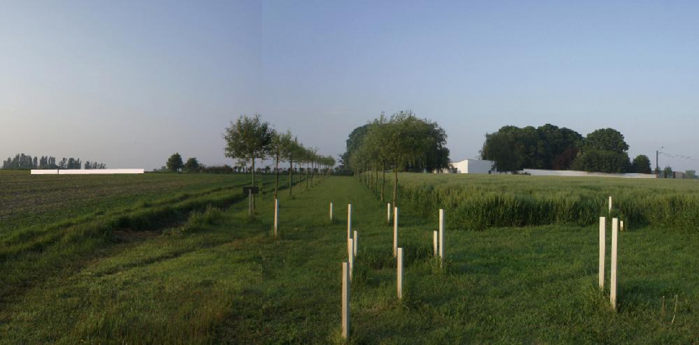 zilverberg site roeselare:    muze'um L        //        archeo site 'oude zilverberg'          //        villa eksternest