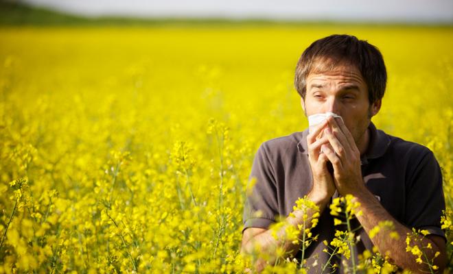 Bardziej powszechne są reakcje alergiczne z udziałem przeciwciał klasy IgG.