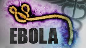 John Pereless On Ebola Virus.jpg