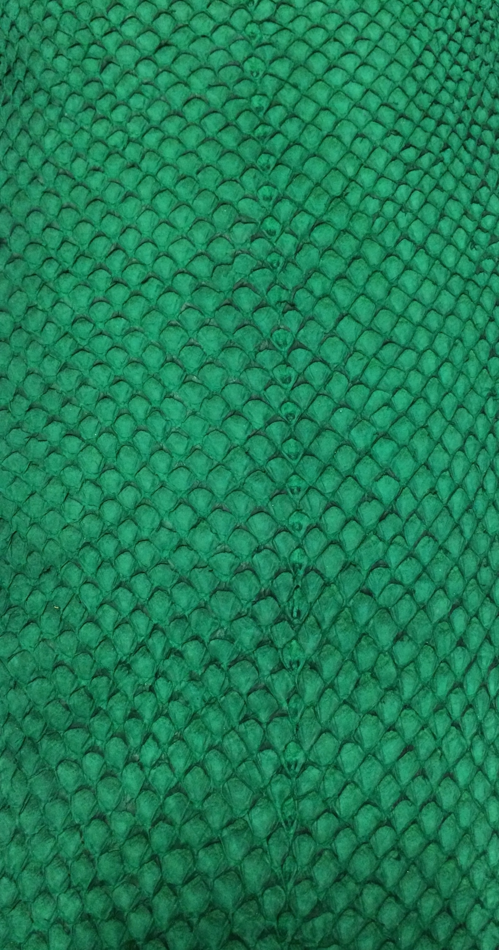 Salmon Leather - Green