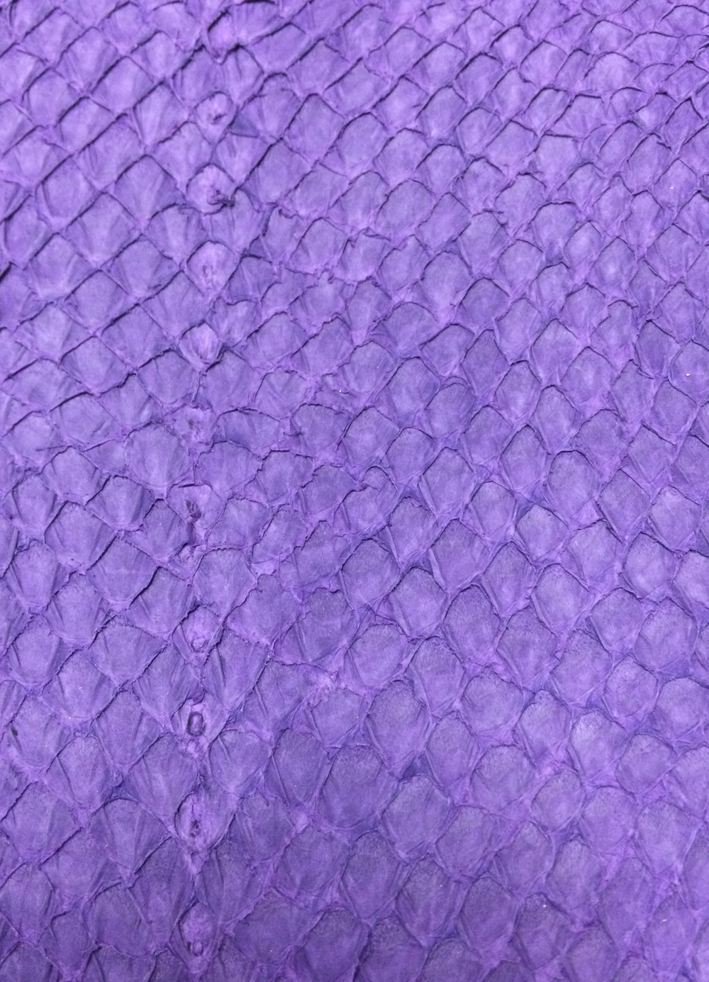 Salmon Leather - Purple