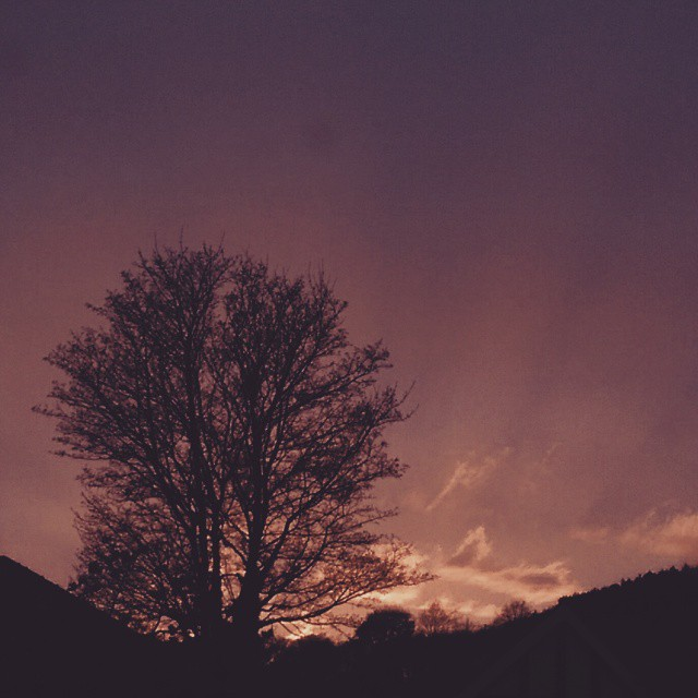The sky is on fire. #vsco #vscocam #vscogood #wearevsco #bestofvsco #afterlight #afterlightapp #skywatch #sunset #nature #wonderfulworld
