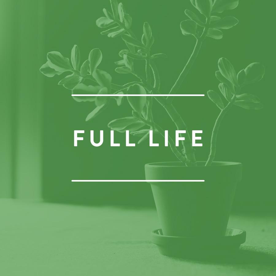FULL LIFE.jpg