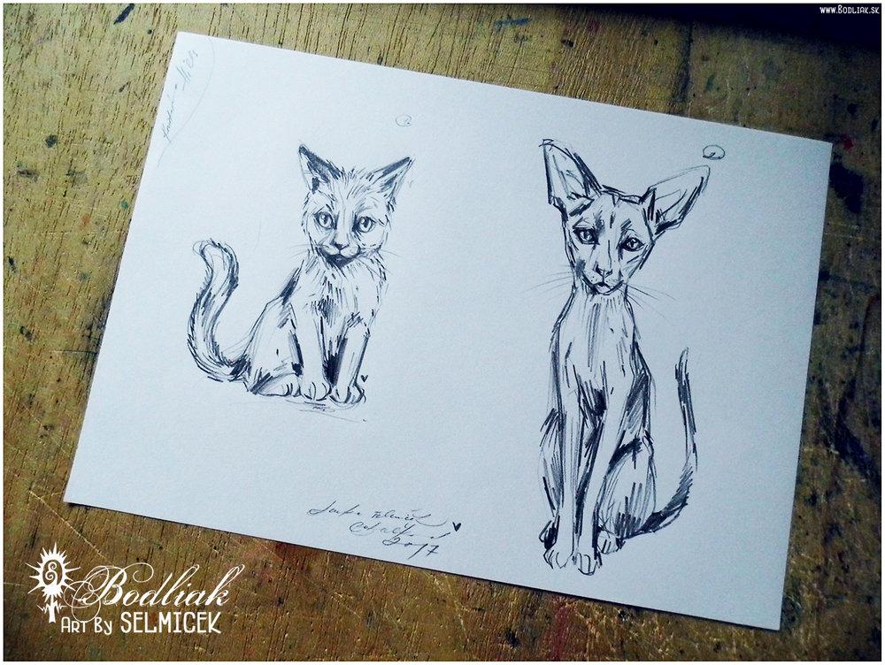 Mačgy 1   autor: Selmicek  cena za tetovanie 50,- eur