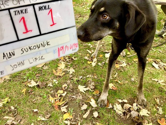 Day one of #homeoffice in the can. Thanks to my amazing cast and crew, including this little rascal who nailed her scenes.