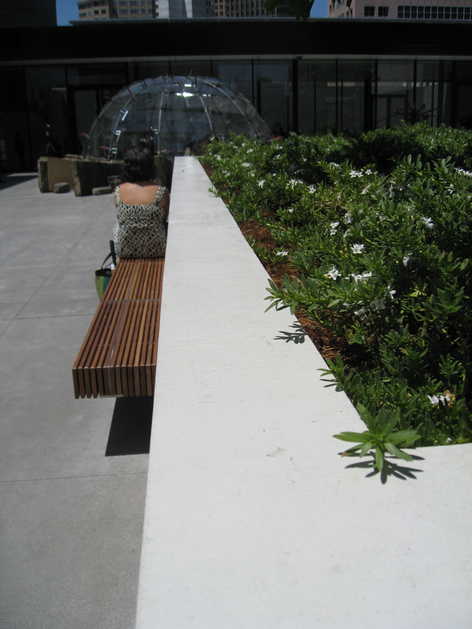 sfmoma-roof-planter.jpg