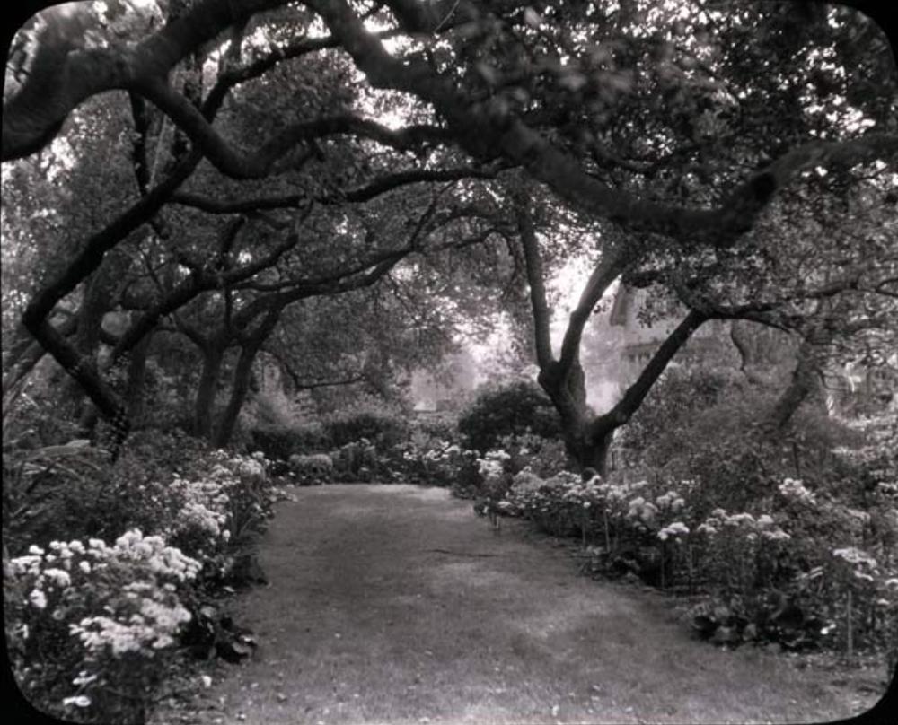 Unidentified-Garden-Pasadena.jpg