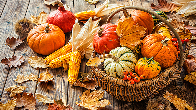 diy-thanksgiving-decorations.jpg