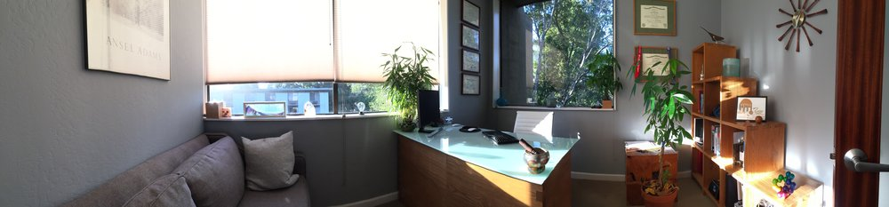 Alex Dimitriu MD Menlo Park Psychiatry and Sleep Medicine Office Pano 4