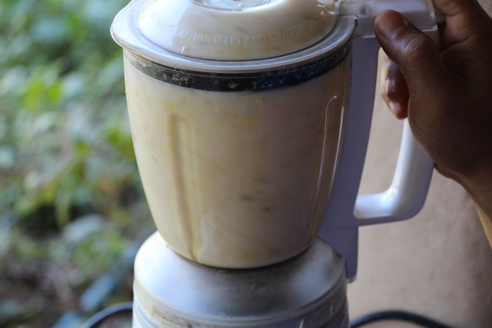 Soy being blended for milk