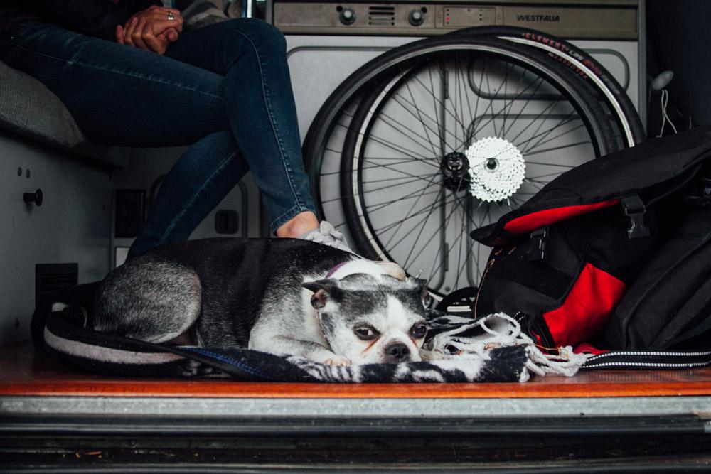 SS_BikePhotography-1-10.jpg