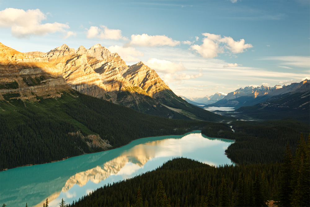 peyto lake dawn
