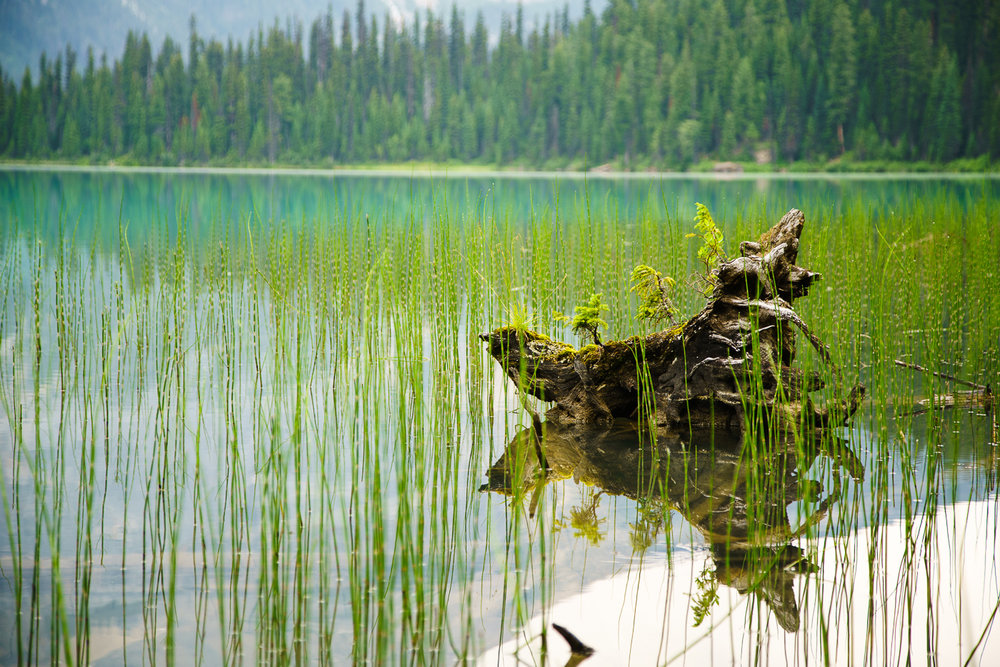Emerald Lake Impression.jpg