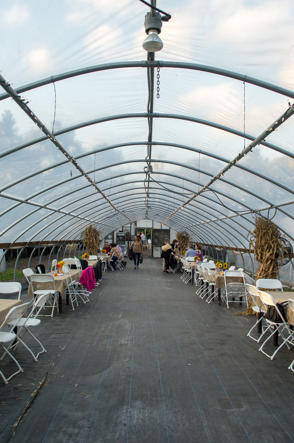 october greenhouse dinner-9.jpg