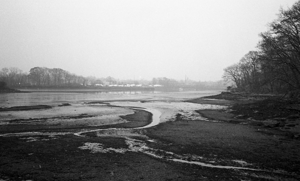 Tri-X developed in Sprint chemistry and scanned on Epson V700