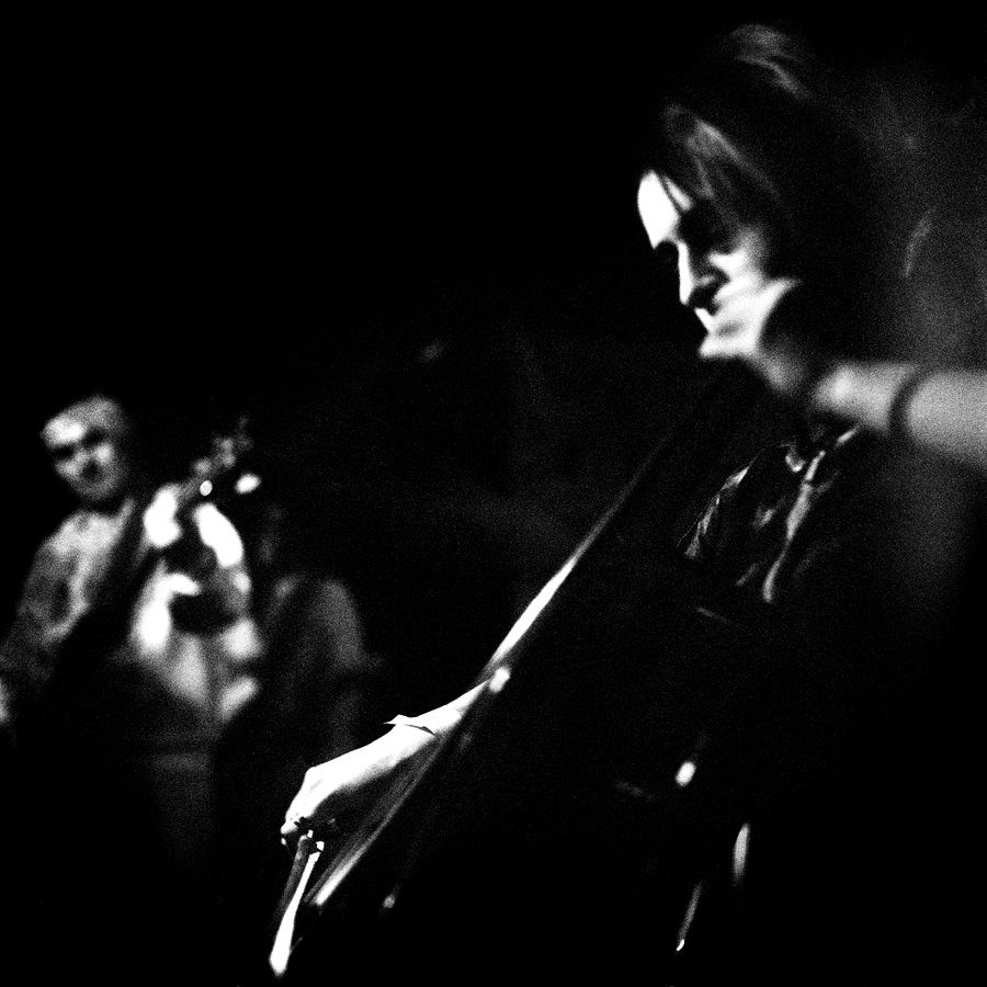 The Deadfly  Ensemble