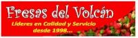 LOGO_FRESAS_DEL_VOLCAN_.jpg