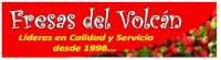 FRESAS_DEL_VOLCAN_.jpg