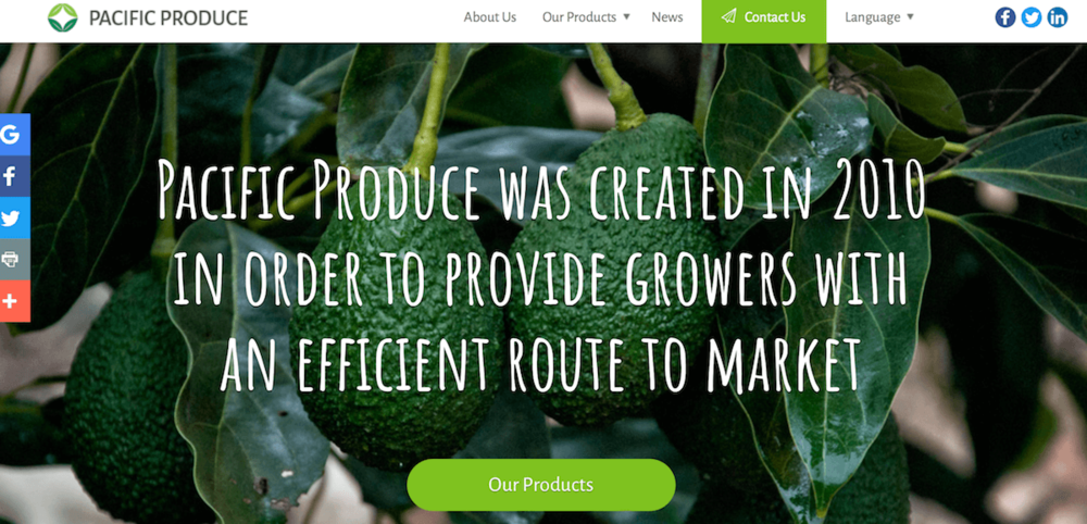 Pacific_Produce_Ltd.png