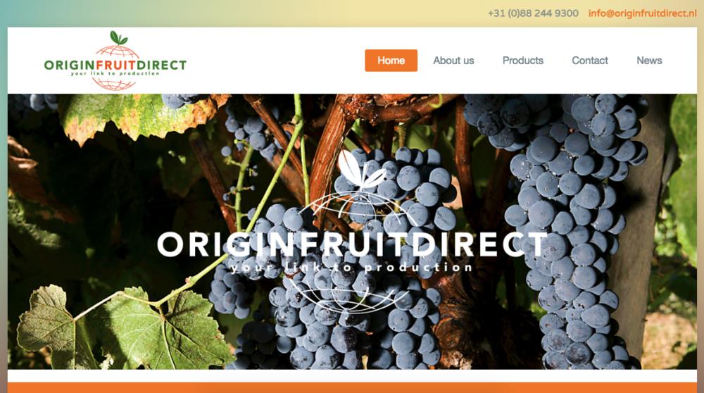ORIGIN FRUIT DIRECT B.V.