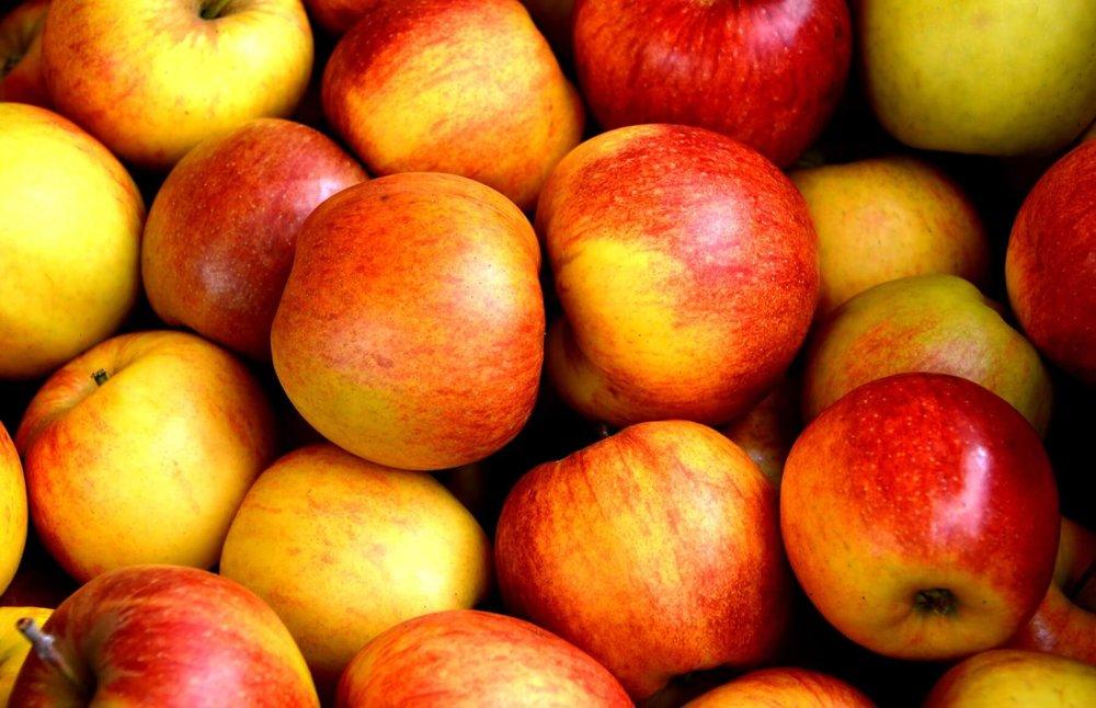 apples2.jpeg
