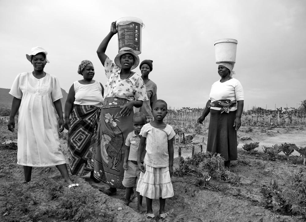 Zimbabwe nutrition garden