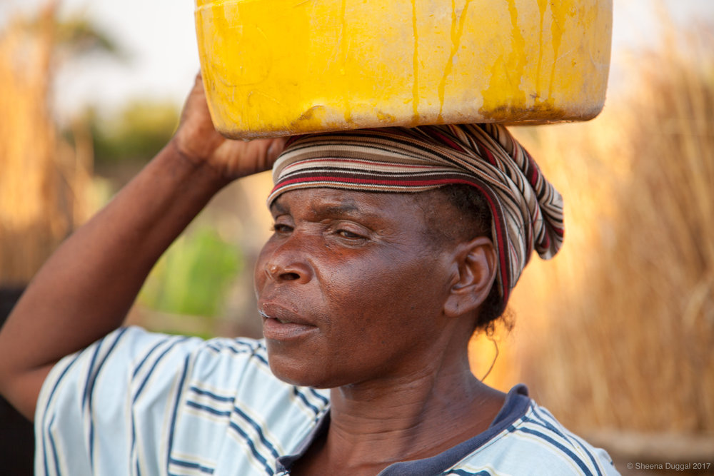 Water drips onto the nose of a water carrier. Zimbabwe 2010
