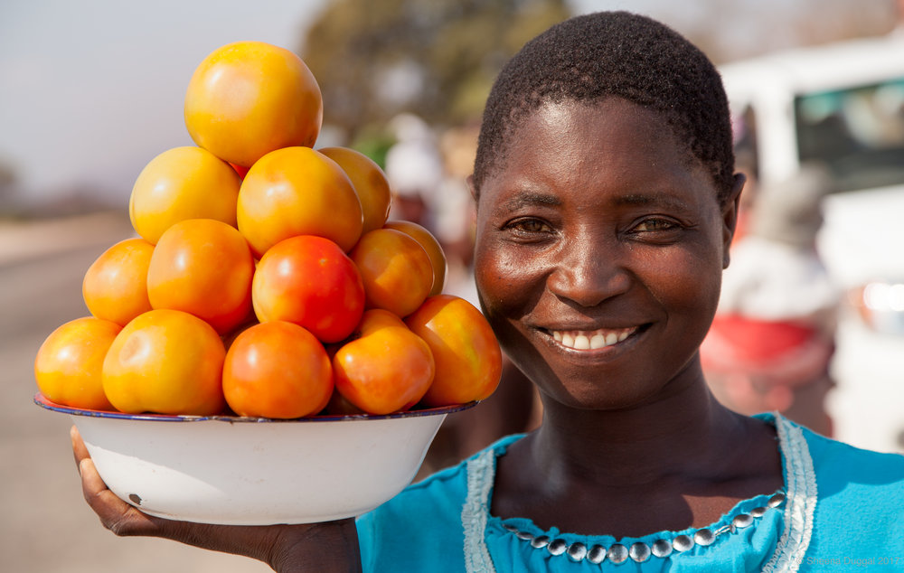 Lady selling tomatoes she has grown, Zimbabwe 2010