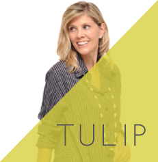 tulip_thumnail.jpg