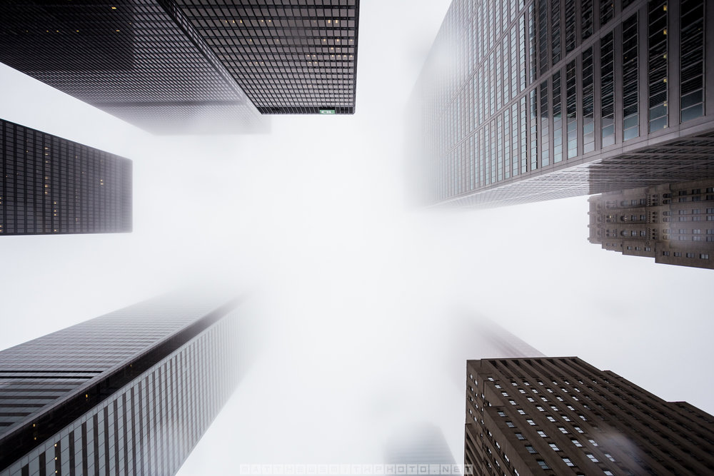 Toronto's financial district is blanketed in fog as some of the countries tallest skyscrapers disappear into the sky