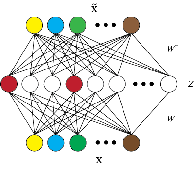 A diagram of a sparse autoencoder network. The input vector \(\mathbf{x}\)  is converted to a sparse representation on the hidden layer as \(\mathbf{z}\) and then reconstructed as \(\mathbf{\widetilde{x}}\).