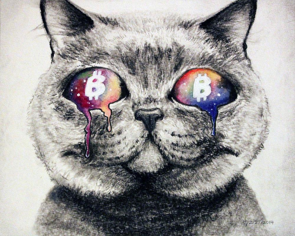 meow-dma