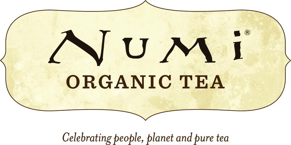 Numi org Logo - celebrating_HR.jpg