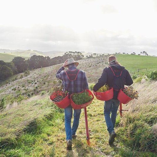 Greening Australia - Give2Asia Partner Restoring Australia's Ecosystems