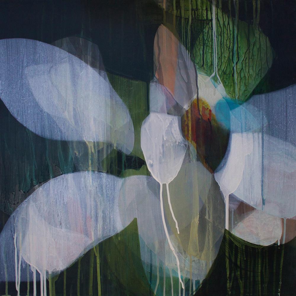 (flora) hydrangea