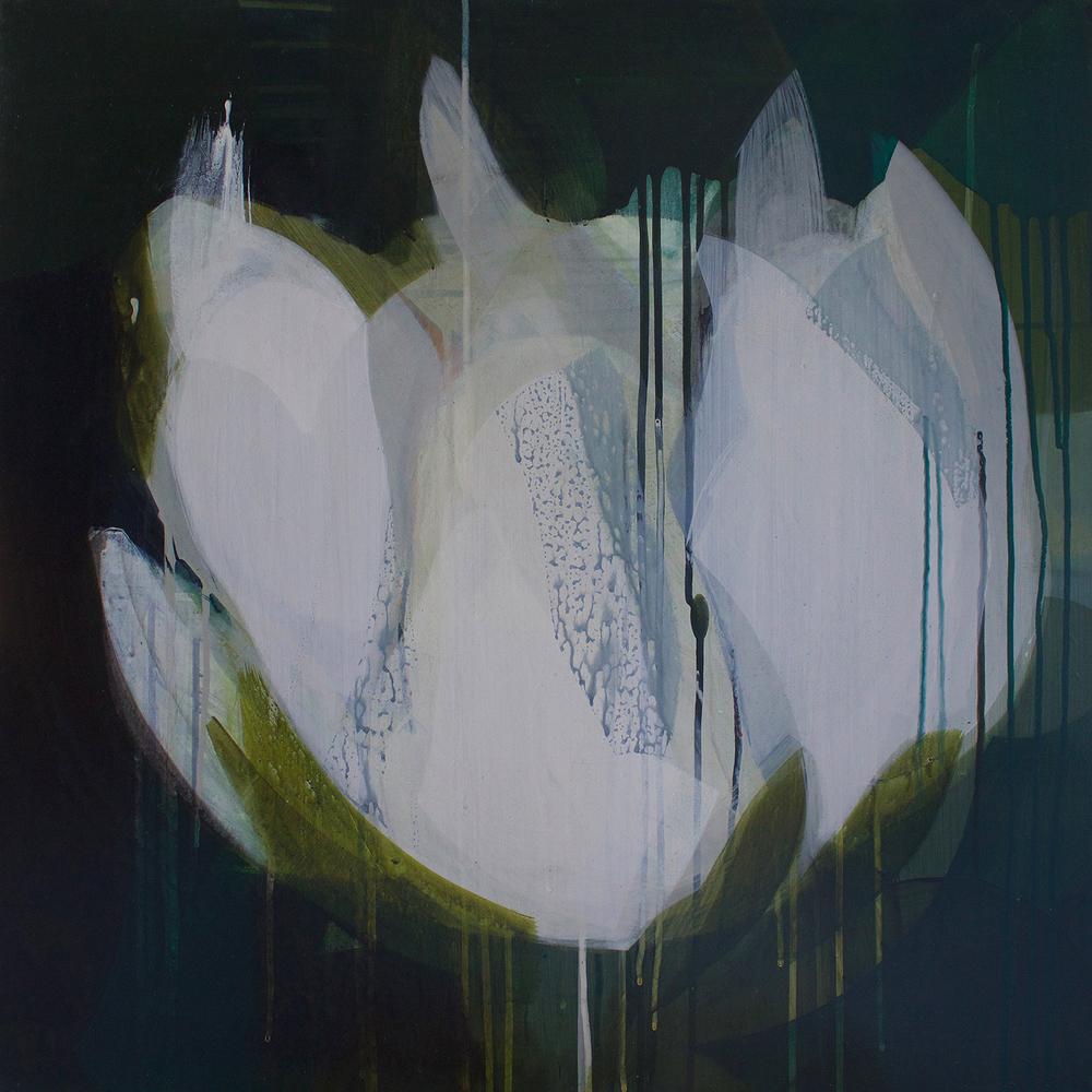 (flora) magnolia