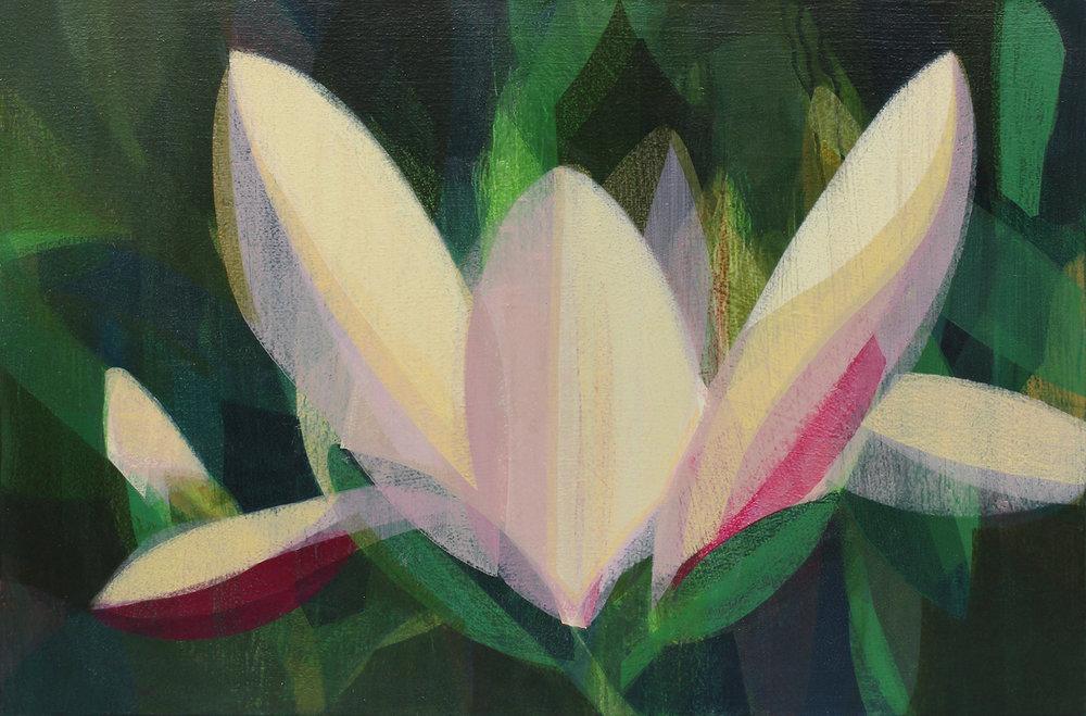 SANDOZ, Katherine - Magnolia - Pink Pearl - 24x36.jpg