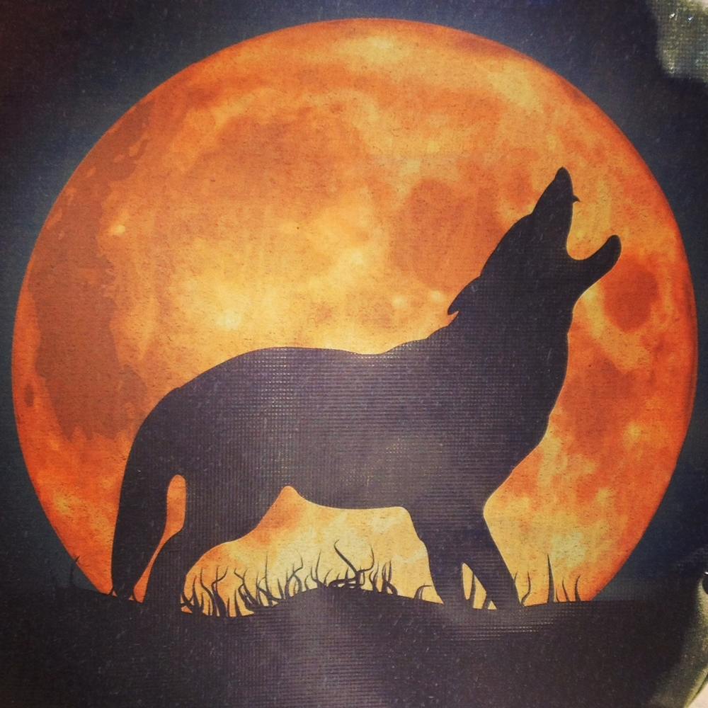 I saw this spare wheel cover on a Jeep in Cobble Hill, Brooklyn and it made my wild woman heart sing….er…. HOWL!